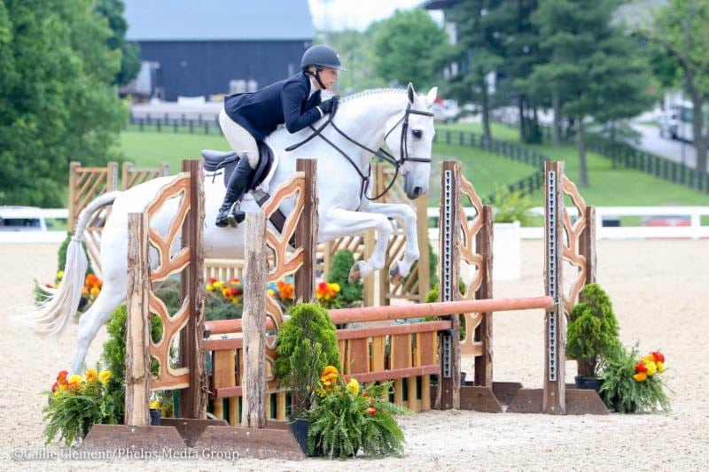 Larissa Hufnagel and Devout Dominate in the Ariat Adult National Medal