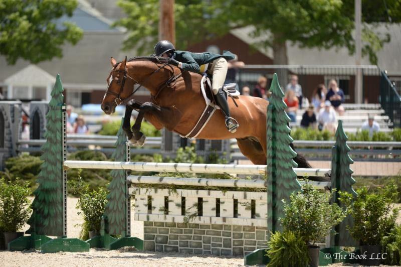 Pony Lane Farm Offers Two Top-Quality Young Prospects