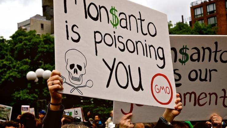 Landmark lawsuit claims Monsanto hid cancer danger of weedkiller for decades