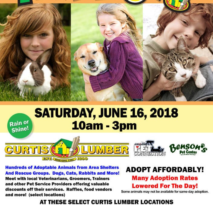 """Curtis Lumber To Host 9 TH Annual """" Pet A Palooza"""" Pet Adoption Day & Fair June 16 th"""