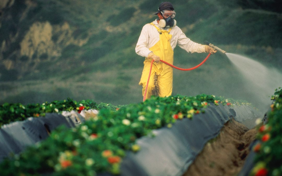 "Hawaii bans toxic pesticide ""chlorpyrifos"" linked to neurological damage in children… but it's legal in the other 49 states (and you're eating it)"
