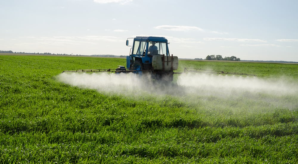 WHY FARMERS ARE USING GLYPHOSATE TO KILL THEIR CROPS — AND WHAT IT MIGHT MEAN FOR YOU