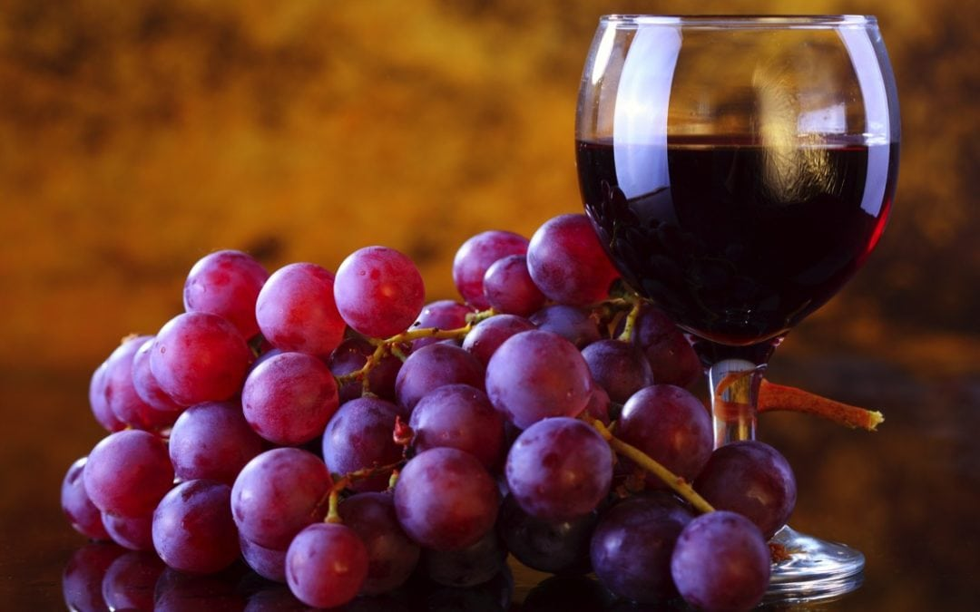Resveratrol is good for your brain; it improves blood vessel health