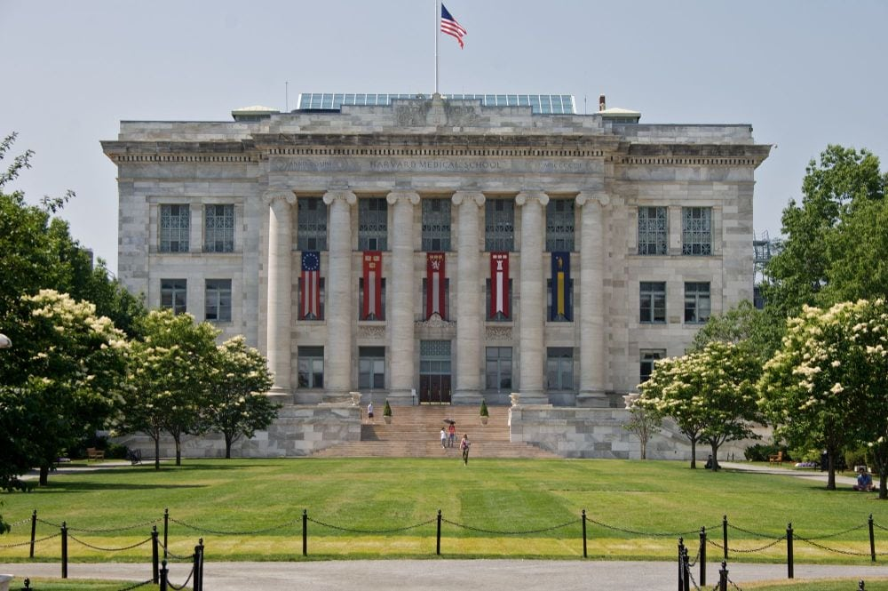 Harvard Medical School: White doctors not welcome here anymore