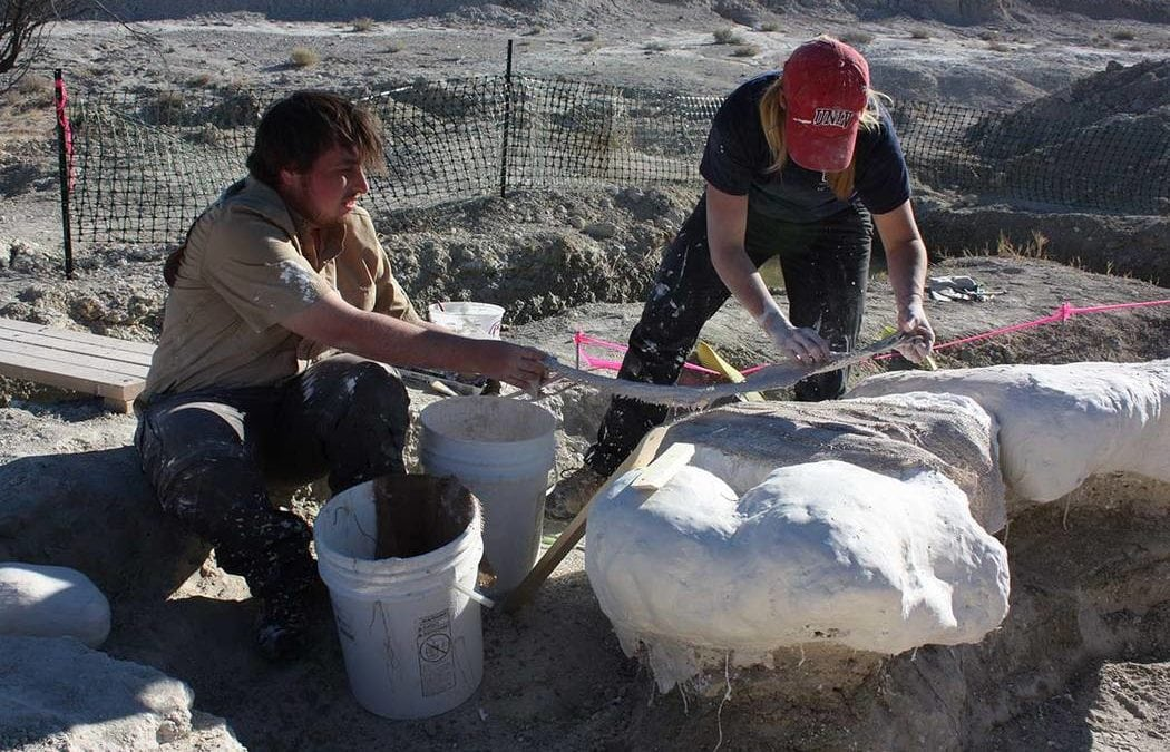 UNLV students' next mystery to unearth: Mammoth's diet