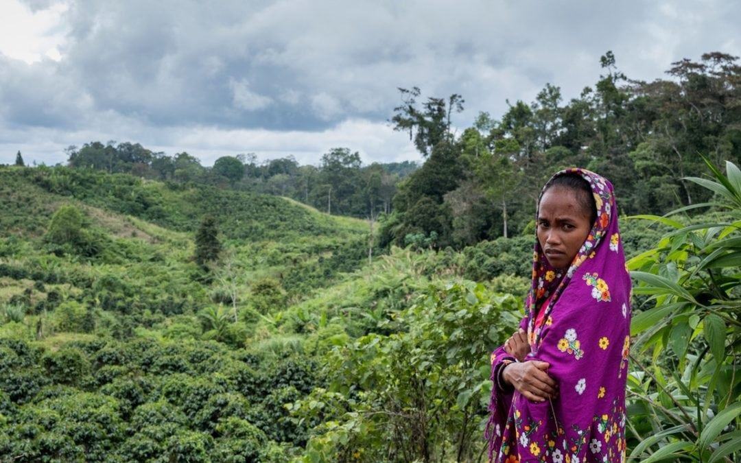 DEFENDING LAND AND ENVIRONMENTAL RIGHTS HAS BECOME AN INCREASINGLY DEADLY ENDEAVOR