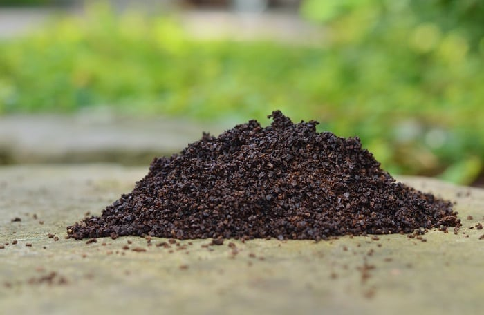Stop slugs from ruining your garden with these natural strategies