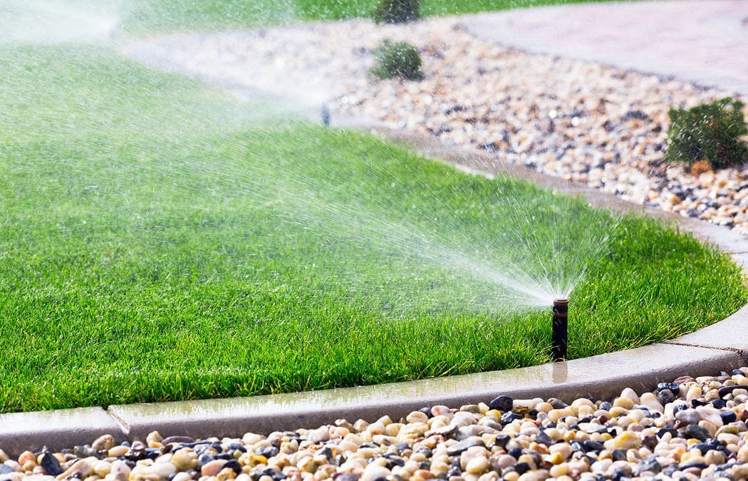 Las Vegas Valley water users reminded about Sunday watering ban