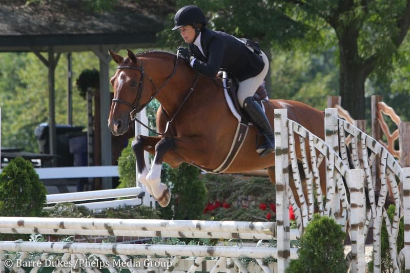 Daryl Portela and Argentus Return to the   Top With Amateur-Owner Hunter Grand Championship