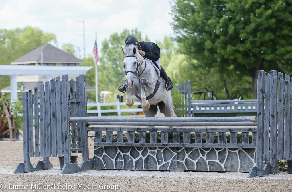 """Holly Shepherd and The Governor Lead the Charge in Performance 3'6"""" Hunter Division in Equifest III"""