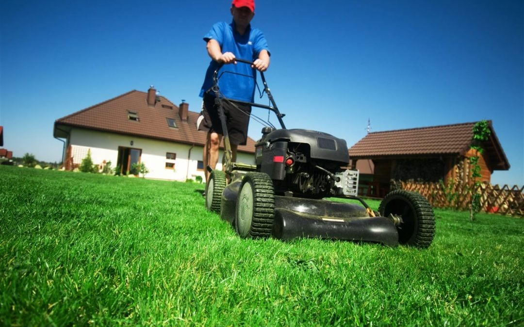 5 simple tips for a low-maintenance lawn