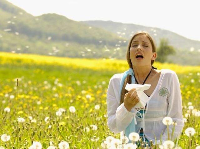 Experts develop allergy guide for picking landscape plants