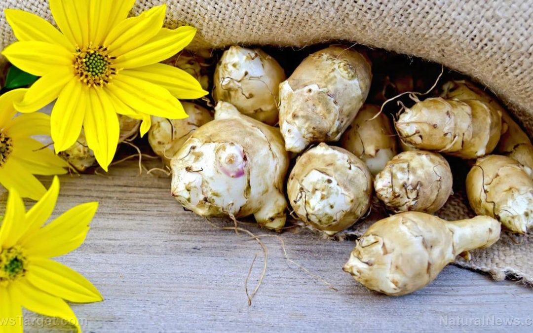 Health benefits of Jerusalem artichoke and its potential use in food products