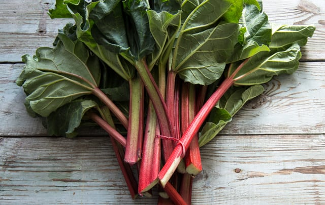 China research: Rhubarb relieves gastrointestinal dysfunction in critically ill patients without any side effects