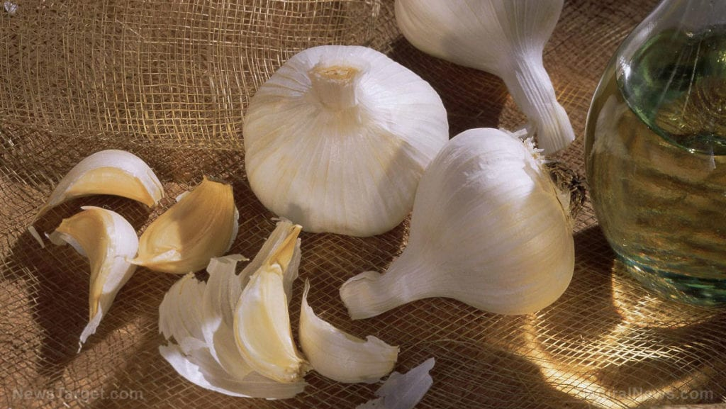 Food cures: A guide to making your own garlic tincture – [your]NEWS