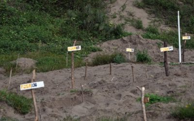 2,000 CLANDESTINE GRAVES: HOW A DECADE OF THE DRUG WAR TURNED MEXICO INTO A BURIAL GROUND