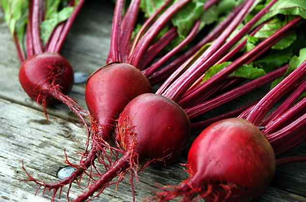 Beetroot shows potential for improving athletic performance and endurance