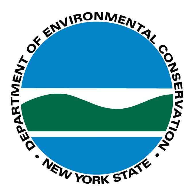 Announcing the Application Cutoff of Date for the Young Forest Initiative to Benefit Native Wildlife in New York