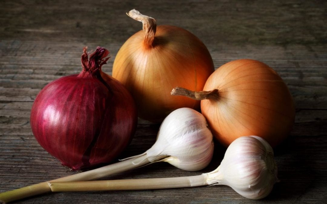 Garlic, white onion, and purple onion found to possess antihypertensive, antidiabetic properties