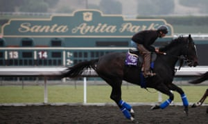 Two more racehorses die at Southern California track: media