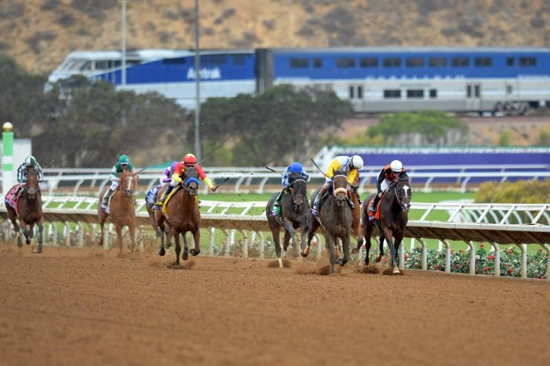 Two horses killed in training collision at Del Mar