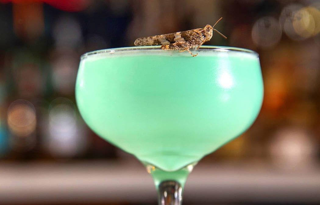 Las Vegas grasshopper invasion sparks drink specials
