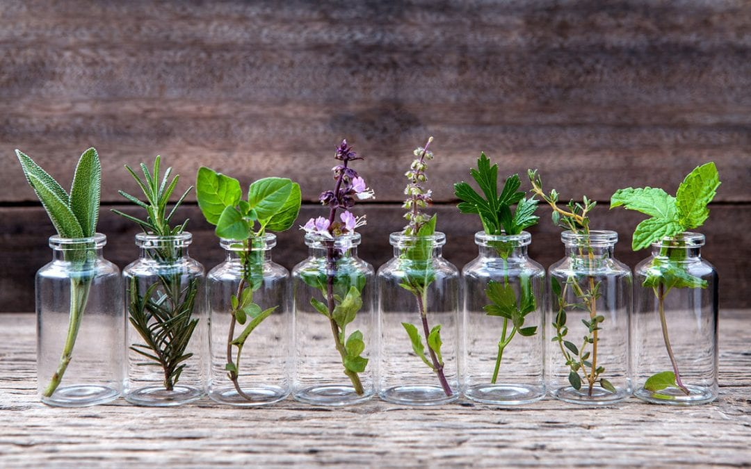 Which carrier oils should you pair with your essential oils?