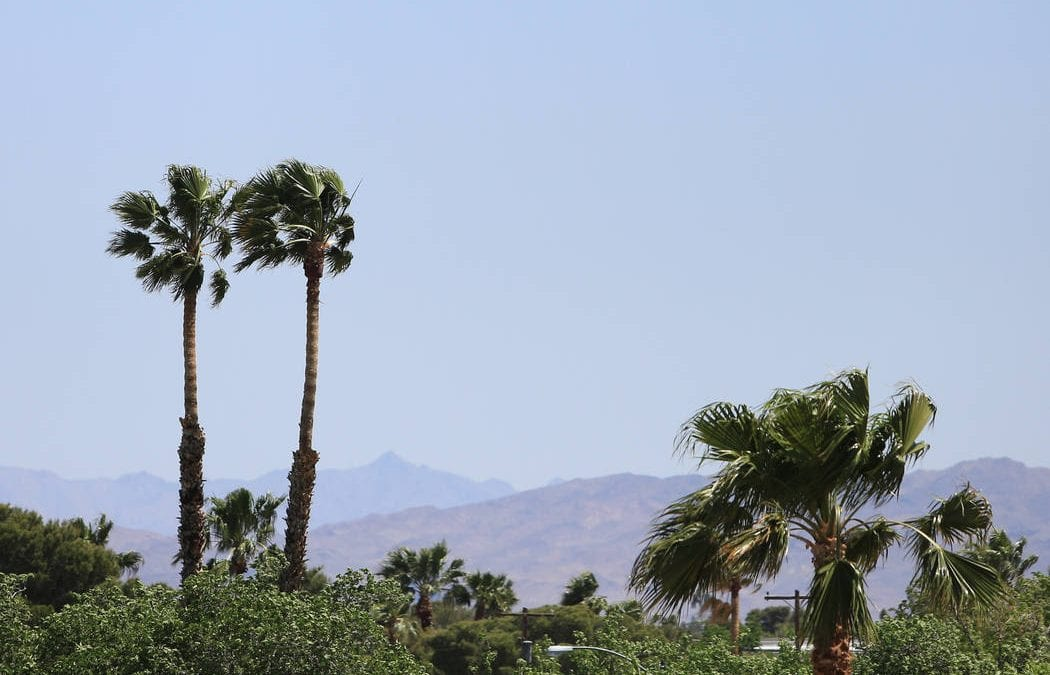 Gusty winds, highs around 103 forecast for Las Vegas on Friday