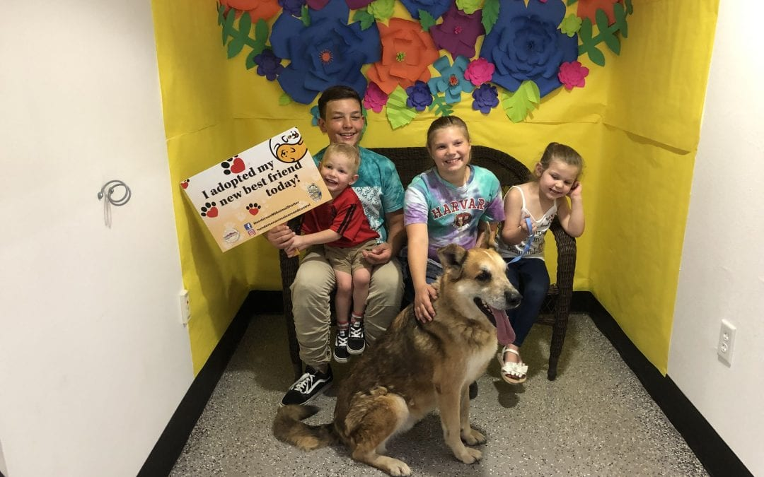 Pets Find a New Home at Henderson Adoption Even