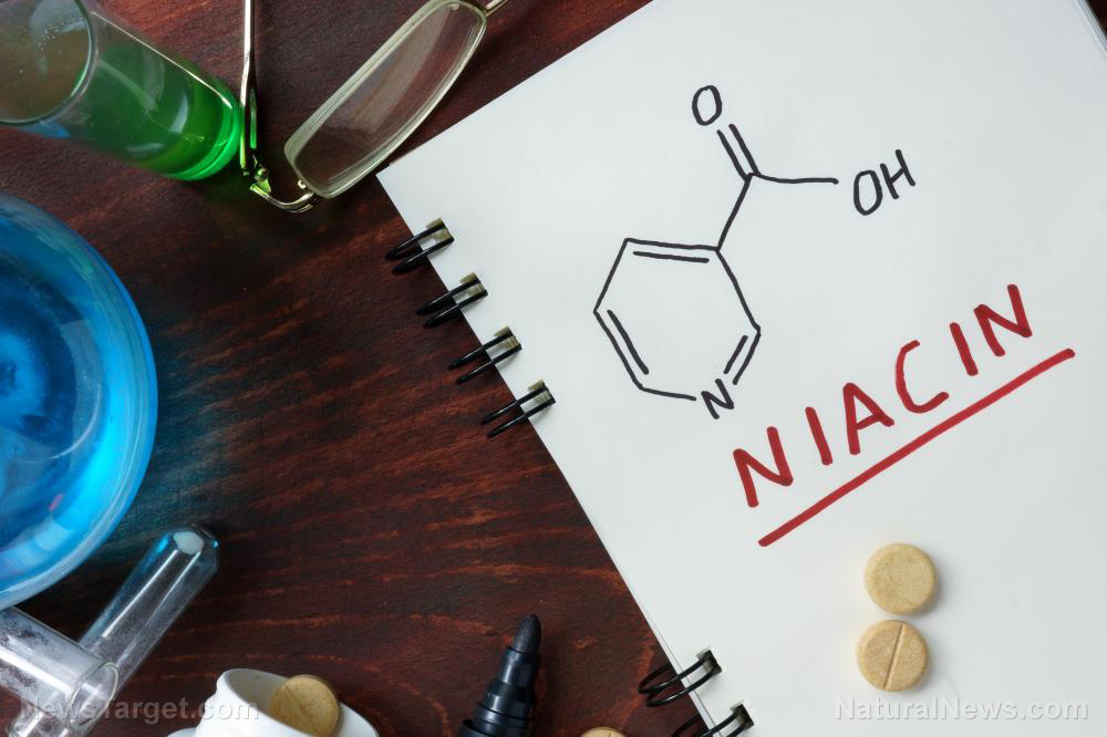 Could a simple vitamin be an anti-aging tool?
