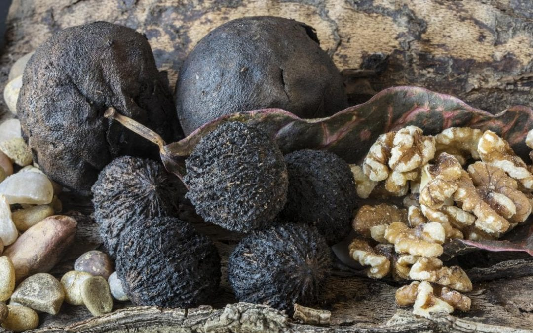 Here are 5 reasons to add black walnuts to your next meal