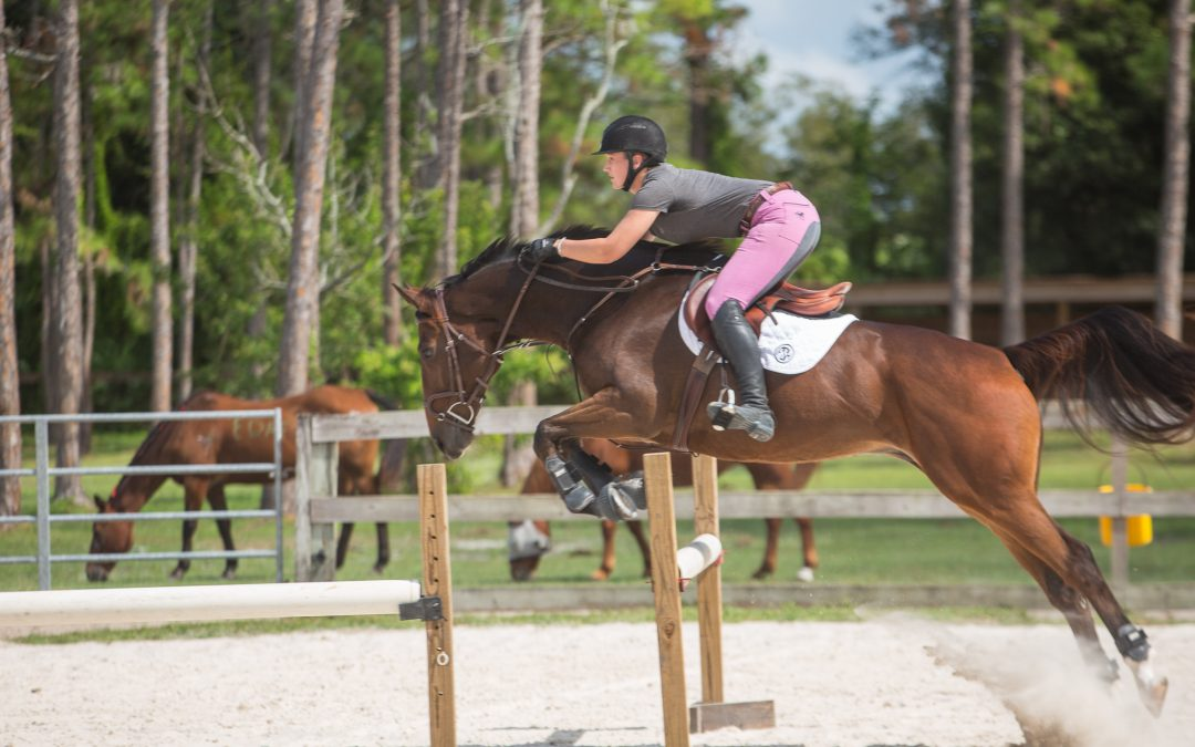 Country Festival Presented by Infiniti Stuart at the Equine Rescue and Adoption Foundation