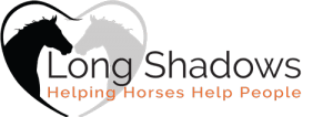 fall-colors-and-horse LONG SHADOWS FARM HOSTS EQUINE PROGRAM FOR VETS - 9/28/2019 Charities Events Family Friendly Featured Services [your]NEWS