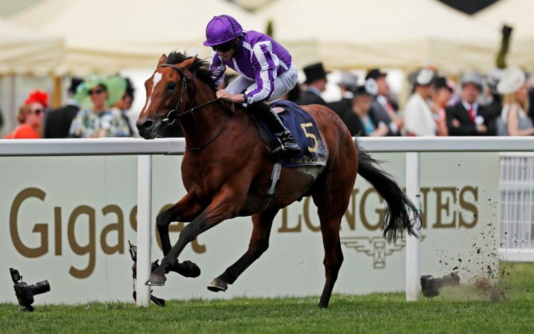 Horse racing: Waldgeist denies Enable unprecedented Arc hat trick