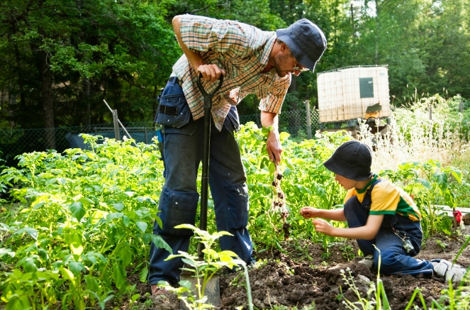 Is your state a good place for homesteading?