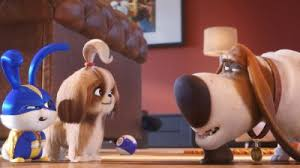 Lakewood Park Library Uncovers the Secret Life of Pets Nov. 27