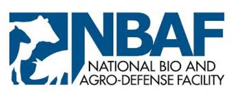 NBAF Names First Permanent Director