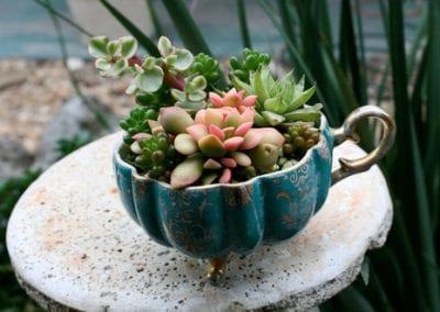 Sprout-Seedling-Soil-Green-Seed-Growth-Plant Upcycling tips and tricks: Easy ways to make DIY planters out of these 10 household items [your]NEWS