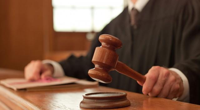 Guilty Pleas Entered In South Dakota Illegal Bird Trafficking Case