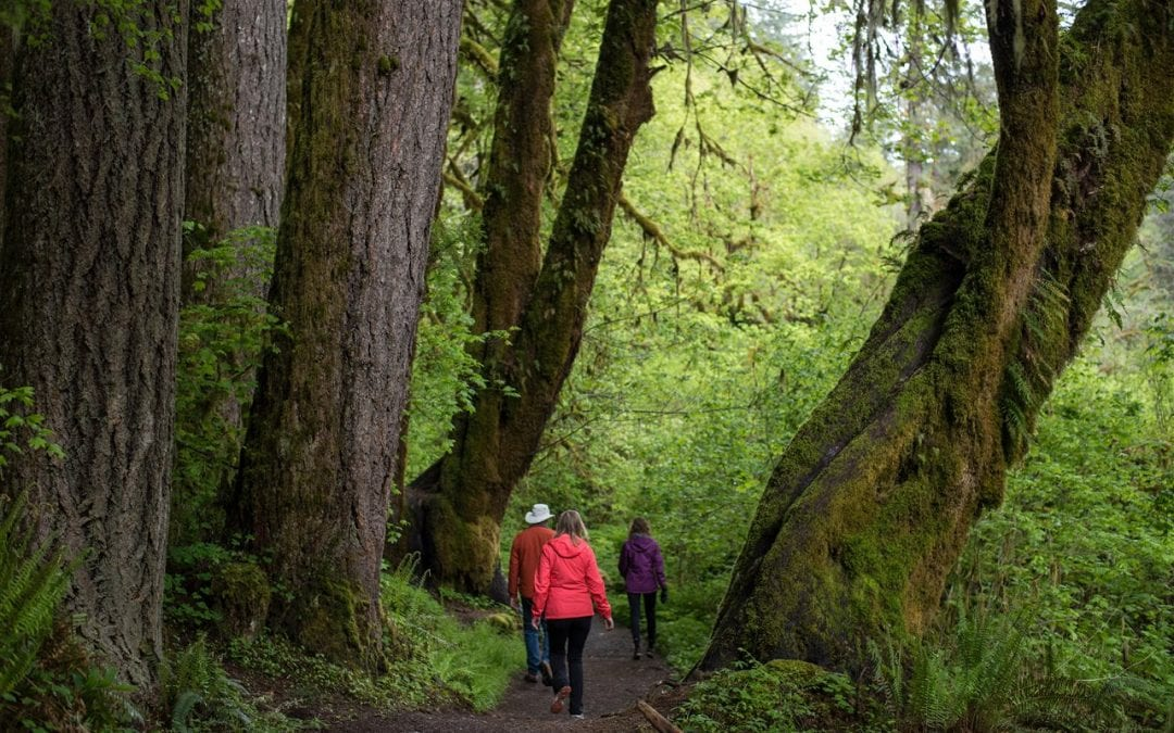 Kick off 2020 by getting outdoors and enjoying state parks