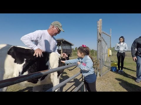 St. Lucie 4-H Open Farm Day Slated for Jan. 7