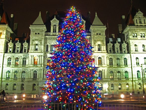 City of Albany Tree Lighting on Dec 5 th – 5 -7 PM on steps of Albany City Hall !!