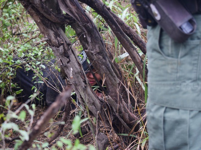 Network of Mexican Cartel Smuggling Trails on Texas Soil, Says Border Patrol Supervisor