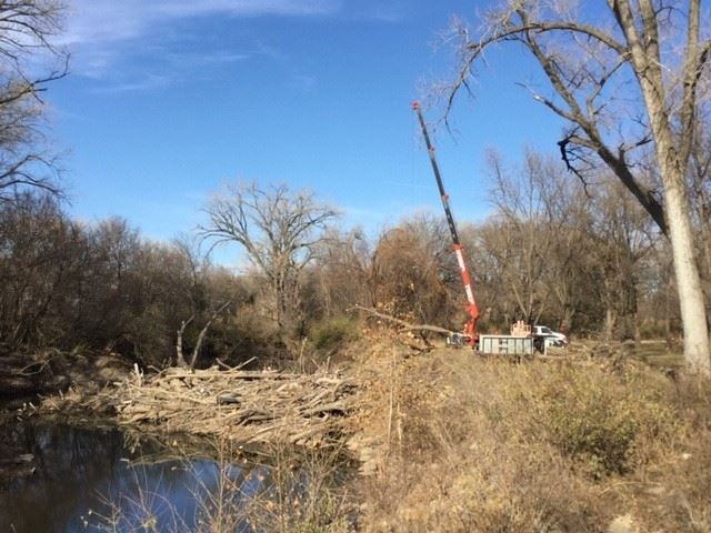 251K Pounds of Wood Debris Removed from Wildcat Creek