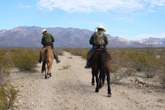 Border Patrol Captures Deported Rapist Back In US