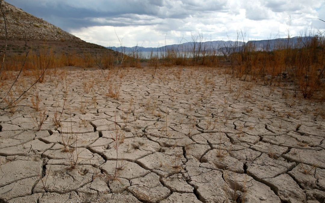 Conservation key as decades-long drought continues