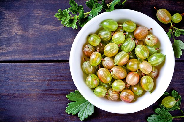 Add gooseberries to your diet to keep metabolic syndrome at bay