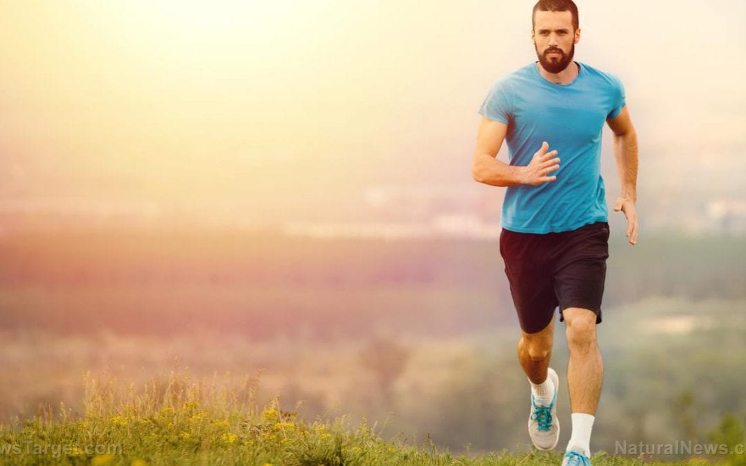 Study: Runners on vegan, lacto-ovo-vegetarian and omnivorous diets have similar exercise capacity