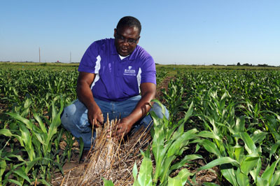 K-State Eyes New Approach To Soil Health In Dryland Cropping Systems