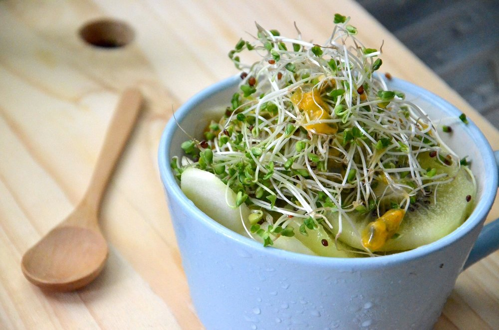 Compounds in broccoli sprouts can help fight gastritis and stomach ulcers: Study